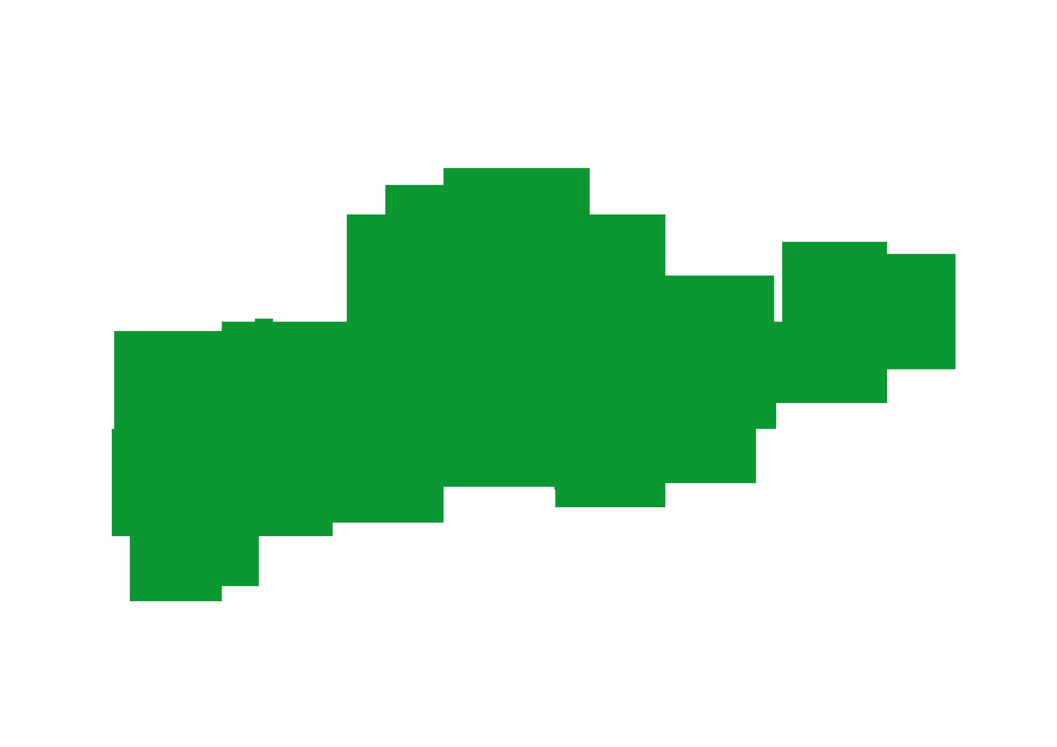 sneakerslogogreen